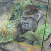 A street chalk art mural of a Gorilla and Tree Frog. Chalk art by Eric Maruscak.