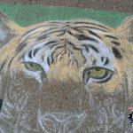 Earth Fest Chalk Art 2008